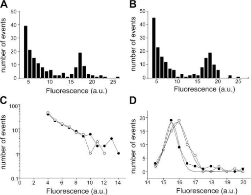 The distribution of fluorescence steps reveals two populations of events. (A and B) Two separate sets (batches of cultures, four to six coverslips each) of pooled events analyzed for the extent of fluorescence decline in individual steps. A similar distribution is seen in each case. (C) The events of smaller amplitude (<14 units) are linear on a semi-log plot, indicating that they can be described by a single exponential distribution. Closed circles are data from A, open circles are data from B. (D) Larger amplitude events (>14 units) show a normal distribution with a peak around 16 units. Closed circles are data from A, open circles are data from B.
