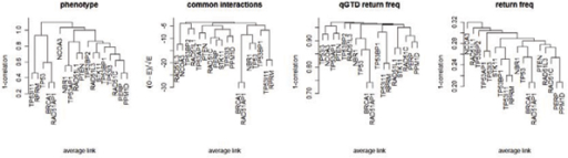 Hierarchical clustering of transcripts. Clustering is based on the phenotype (expression values), common interacting loci pairs, qGTD return frequencies, and overall return frequencies.