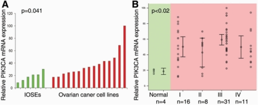 PIK3CA overexpression was an early genetic event during ovarian tumorigenesis.A. PIK3CA mRNA expression was significantly up-regulated in the established epithelial ovarian cancer cell lines (n = 15) compared with primary cultured ovarian surface epithelial cells (n = 6, p = 0.041). mRNA expression was measured by real-time RT-PCR. B. mRNA expression level of PIK3CA was significantly upregulated in ovarian cancer specimens compared with normal control ovarian epithelium. Normal ovarian epithelium was isolated by laser-capture microdissection. There was no further significant increase of PIK3CA mRNA expression after malignant transformation among different stages of ovarian cancer.