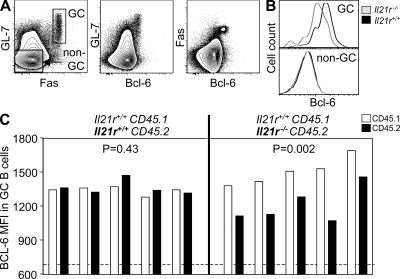 Lack of IL-21R signaling reduces the expression of Bcl-6 in GC B cells. (A) Flow cytometric contour plots indicating the gating strategy for non-GC and GC B220+ cells (left) and BCL-6 expression on GL-7+ (middle) and Fas+ (right) B cells. (B and C) Histogram overlays (B) and bar graphs (C) showing the fluorescence intensity of BCL-6 staining in GC and non-GC B cells as gated in A derived from the CD45.1 Il21r+/+ or CD45.2 Il21−/− compartment of CD45.1 Il21r+/+/CD45.2 Il21r−/− mixed bone marrow chimeras 6 d after SRBC immunization. The horizontal dashed line highlights the median levels of Bcl-6 found in non-GC B cells. Each set of two bars represents the data from the CD45.1 and CD45.2 compartments of a single mouse. MFI, mean fluorescence intensity.