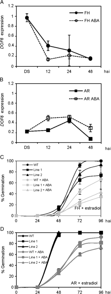 ABA effect on DOF6 expression and ioexDOF6 seed germination. (A and B) DOF6 expression by quantitative RT-PCR in freshly harvested (FH; A) and after-ripened (AR; B) Col-0 seeds imbibed in water with 2 and 5 μM ABA, respectively. (C and D) Germination of FH (C) and AR (D) wild-type (WT) and ioexDOF6 seeds in water supplemented with 50 μM estradiol and 0.5 and 1 μM ABA, respectively. Germinating percentages are represented as the mean±standard error from three replicates. Germination patterns were confirmed in two different seed batches. Gene-specific mRNA levels are relative to UBC21.