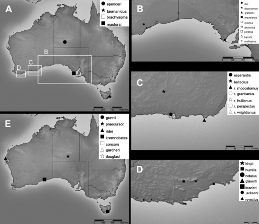 Type localities of Bothriembryon taxa, dealt with in this study, for which accurate type locality data are available. A Species of central and south-east Australia B Species from the eastern South Coast C Species from Esperance region D Species from Stirling Range and Albany regions E Fossil species.