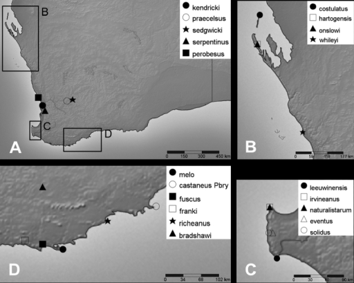Type localities of Bothriembryon taxa (continued). ABothriembryon species in Western Australia B Species of Shark Bay and adjacent region C Species of the Cape Leeuwin and Cape Naturaliste region D Species of Albany region.