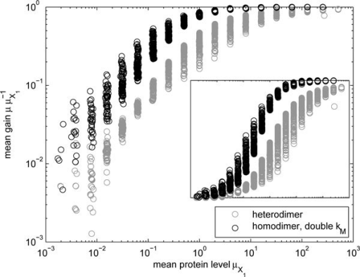 Change in mean levels due to heterodimerization. Relative mean levels of heterodimers P1,2 and homodimers P1,1 (with double kM to compensate for the reduction in the mean level) as a function of the mean monomer level . The inset shows linear gain.