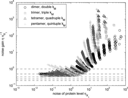 Change in noise levels of homomers due to higher-order multimerization. Relative noise levels of homomers (with adjusted kM to compensate for the reduction in the mean level) with multimerization of different orders as a function of the noise level of monomers . The dashed lines indicate gains of unity, one half, one third, one quarter, and one fifth.