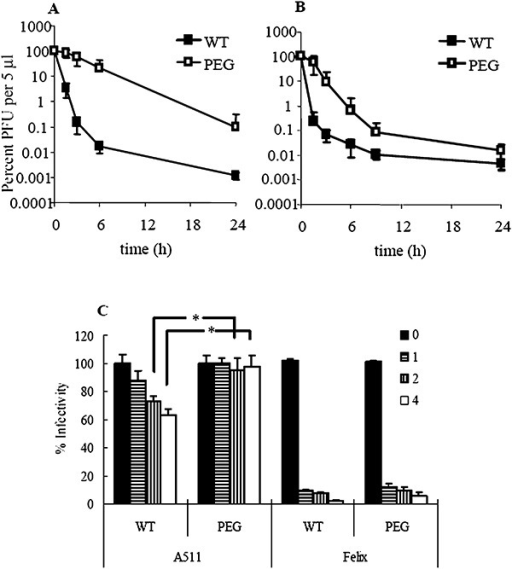 Phage inactivation in the presence of innate immunity in the mouse model, both in vivo for A511 (A) and Felix‐O1 (B), and in vitro (C). In (C), 0, 1, 2 and 4 indicate the incubation time in the presence of serum. In in vivo studies, the number of phage per 5 µl at 0 h is represented as 100%, corresponded to 1 × 106 PFU for WT A511 and 1 × 105 PFU for PEGylated A511, and 1 × 106 PFU for WT Felix‐O1 and 3 × 105 PFU for PEGylated Felix‐O1. The asterisk (*) denotes statistical significance (α = 0.05).