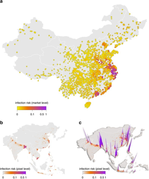 Geographic distribution of predicted H7N9 infection risk.(a) Market-level risk of H7N9 infection at live-poultry markets in mainland China; (b) pixel-level risk of H7N9 infection across Asia, the risk of at least one infected market being present in the given pixel; (c) a three-dimensional surface of the same data plotted in panel b with height representing infection risk to help illustrate its heterogeneity (see http://www.livestock.geo-wiki.org/ for a Google earth view). Note that infection risk is estimated as the probability that a market or pixel would be infected, if the average market-level infection prevalence in China were to remain constant. Since the pathogen is increasing in incidence, this number should instead be interpreted as a metric of infection risk; the relative probability of infection.