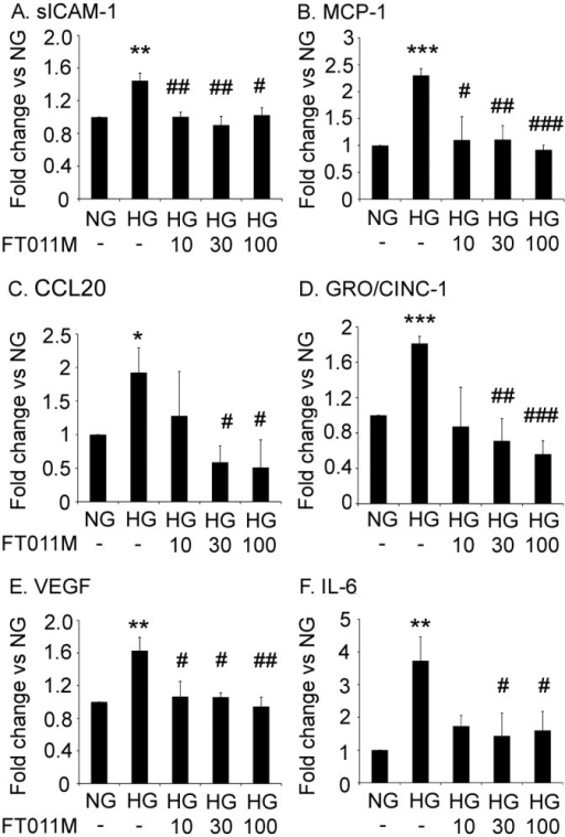 FT011M reduced the protein levels of pro-inflammatory and pro-angiogenic factors in Müller cells.NG, normoglycaemia. HG, hyperglycaemia. (A) soluble ICAM-1 (sICAM-1). (B) MCP-1. (C) CCL20. (D) GRO/CINC-1. (E) VEGF. (F) IL-6. (A, C, D, E and F) values are arbitrary units for cytokine array. Values for (B) are pg/ml for ELISA. *P < 0.05, **P < 0.01 and ***P < 0.001 to untreated (-) NG. #P < 0.05, ##P < 0.01 and ###P < 0.001 to untreated (-) HG. Experiments performed in triplicate with 3 samples per experiment. Values are Mean ± SEM.