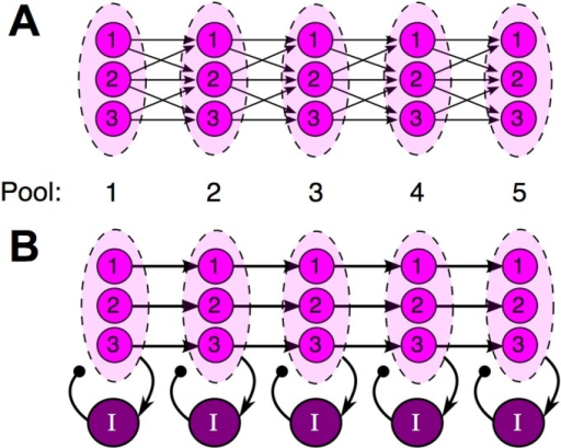 A schematic comparing the synfire chain (A) to our proposed model (B).A, The standard synfire chain. Fan-in and fan-out connectivity allows the spike timing of multiple cells in one pool to influence the spike timing of each cell in the next, which ultimately leads to synchronized spiking within pools. B, Parallel chains generate sequences simultaneously with shared feedback inhibition. Cells in each pool share no common excitatory input and do not directly interact with each other. Instead, synchrony is promoted by inhibitory feedback shared by all cells in a pool. When the interneurons are activated repeatedly by spatially recurrent excitatory activity, this common inhibitory input proves sufficient to synchronize spiking within pools (see Fig 2).