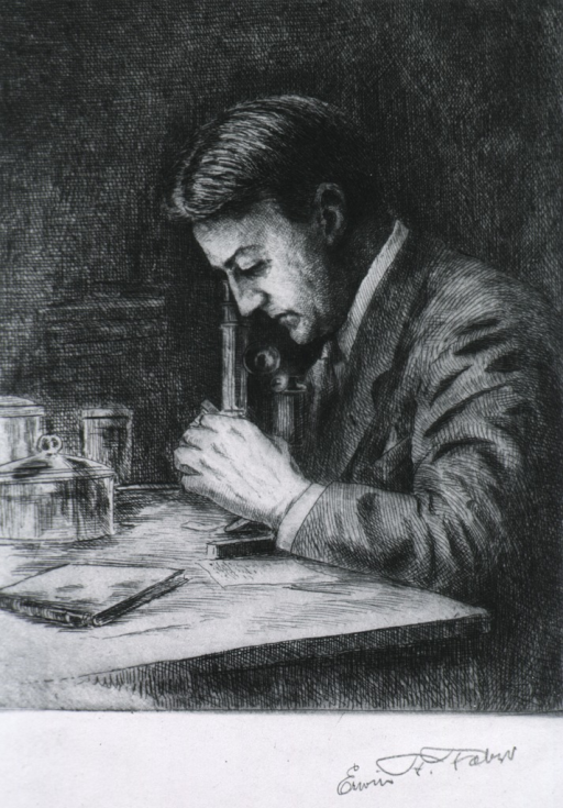 <p>Half-length, seated at table, left profile; looking into microscope.</p>