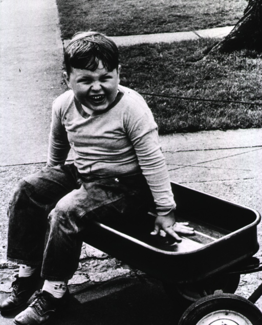 <p>A chubby boy is sitting in a wagon.</p>