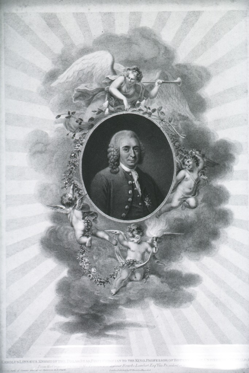 <p>Head and shoulders, right pose, in oval showing several figures in border.</p>