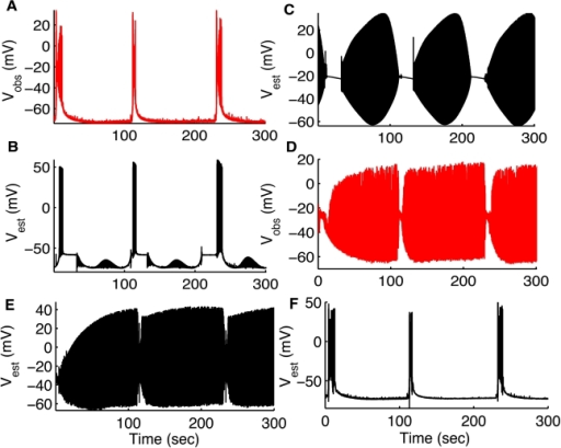 Reconstructing network interaction.Measured (A, red) and estimated (B, black)  for pyramidal cell. (C) Estimated  for interneuron. We used the membrane potential recorded from the pyramidal cell (shown in A, red) to not only reconstruct the full dynamics of the same pyramidal cell (only membrane potential shown in B, black) but also reconstructed the dynamics of the interneuron (only membrane potential shown in C, black). Simultaneously recorded  from the IN is shown in (D, red) for comparison. Estimates for intracellular  concentration and gating variables ,  for PC are shown in Figure S2 and the synaptic variables, ,  are shown in Figure S3. Estimated  for IN (E) and PC (F) by assimilating measured  from IN (shown in (D)). (D–F) are converses of the simulations in (A–C). That is, In (D–F) we used membrane potential recorded from the interneuron (shown in D, red) to not only reconstruct the full dynamics of the same interneuron (only membrane potential shown in E, black) but also the coupled pyramidal cell (only membrane potential shown in F, black: compare with actual values shown in A, red). Simultaneous membrane potential measurements shown in (A,D) were from a pyramidal cell and OLM interneuron in the hippocampus using simultaneous dual whole cell patch clamp recordings demonstrating the firing interplay between these cells during in vitro seizures. Data provided by Jokubas Ziburkus. Panels (A,D) are modified from [23] with permission  American Physiological Society.