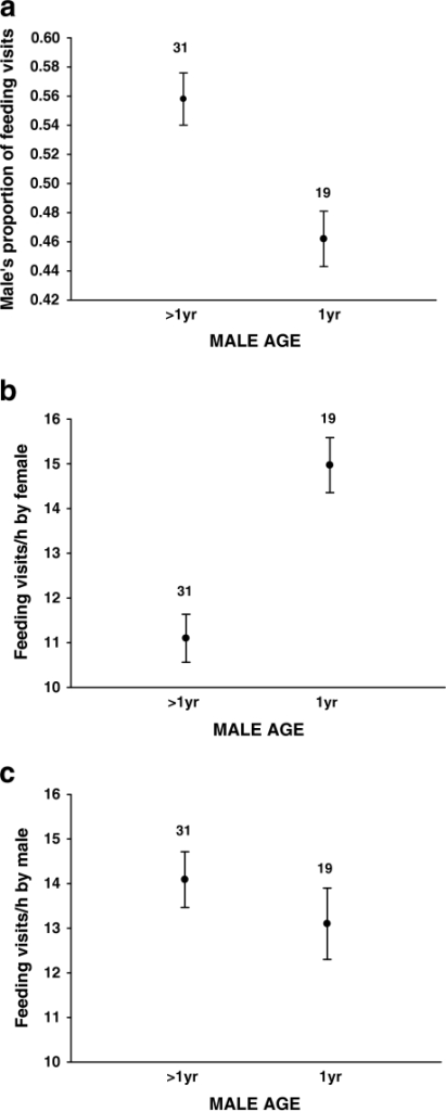 (a) The proportion of feeding visits made by the male in relation to male age (1-year-old or older). (b) Feeding visits/hour of the female when mated with 1-year-old or older males. (c) Feeding visits/hour by 1-year-old and older males. Means ± s.e. are shown with sample size above the bars