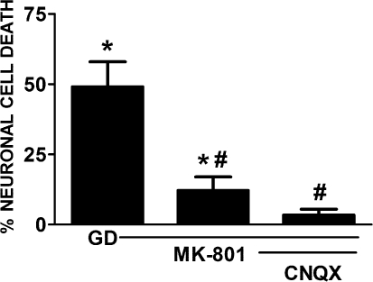 Hypoglycaemic neuronal cell death is attenuated by glutamate receptor antagonismMixed cortical cultures were washed into a BSS0 containing vehicle, MK-801 (10 μM) or MK-801 plus CNQX (6-cyano-7-nitroquinoxaline-2,3-dione; 30 μM) for 8 h (GD). Neuronal cell death was determined 20–24 h later. (*) Indicates values significantly different from control conditions ( = 10.56±3.02%) determined 24 h following wash of cells into BSS0 followed by immediate addition of glucose. (#) Represents a significant diminution of GD-induced cell death as determined by one-way ANOVA followed by Student–Newman–Keul's post-hoc test (n = 11 cultures from three experiments).