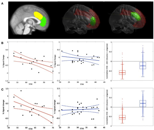 Brain-behavior correlations: STAI (trait). (A) Left panel: Non-overlapping ROIs for the dACC (yellow) and rACC (green). Middle and right panel: rendered dACC and rACC ROI. (B) Correlation of the STAI trait score with activation in the rACC and (C) activation in the dACC in the fearful condition for the contrast inc > cong (solid lines represent regression lines, dashed lines 95% prediction bounds). Left panel: BPD group. Middle panel: HC group. Right panel: Boxplot for the bootstrap-sample correlations (BPD group: red, HC group: blue).