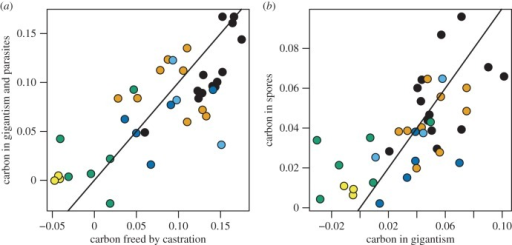 Carbon accounting in infected animals. (a) The solid line shows the 1 : 1 relationship between the expected carbon freed up by castration and the observed carbon in gigantism and parasite spores. (b) The solid line shows the 1 : 1 relationship between observed carbon in gigantism and in spores. Colours denote the feeding interval treatment as in figure 3.