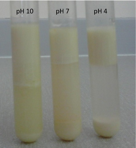 Effect of pH on creaming stability of oil-in-water emulsions (lupin) standing at room temperature for 24 h.