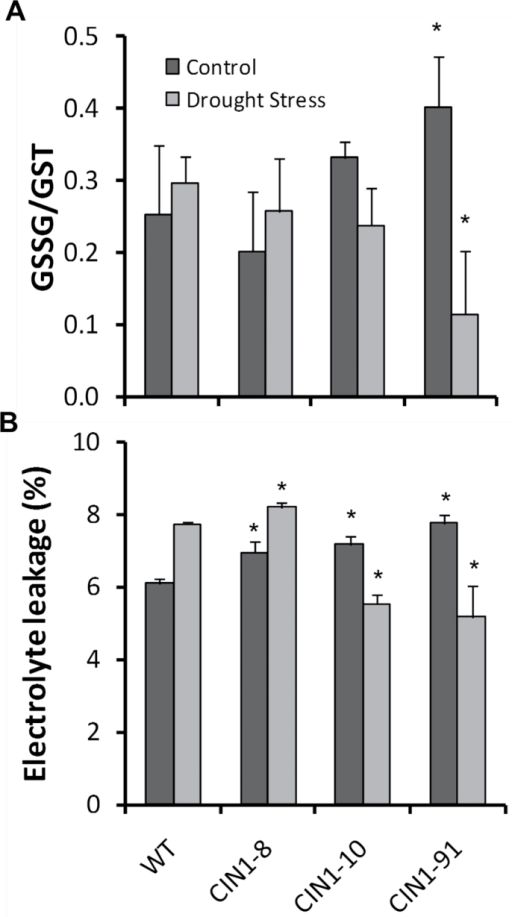 Ratio of oxidized to total glutathione (A) and electrolyte leakage (B) in mature leaves of WT and CIN1 plants under normal watering regimes, and after 9 d of drought stress. Data are presented as means ±SE, *P<0.05, one-way ANOVA, n=3.