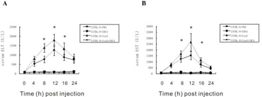 Activation of FXR decreased the serum levels of ALT and AST. (A) The serum levels of ALT and (B) AST were measured in the ConA-treated mice and normal controls in the presence or absence of CDCA at various time points. *P<0.05, ConA-induced hepatitis in the presence of CDCA, vs. ConA-induced hepatitis without CDCA. ALT, alanine transaminase; AST, aspartate aminotransferase; CDCA. CDCA, chenodeoxycholic acid; ConA, concanavalin A; FXR, farnesoid receptor X; PBS, phosphate-buffered saline.