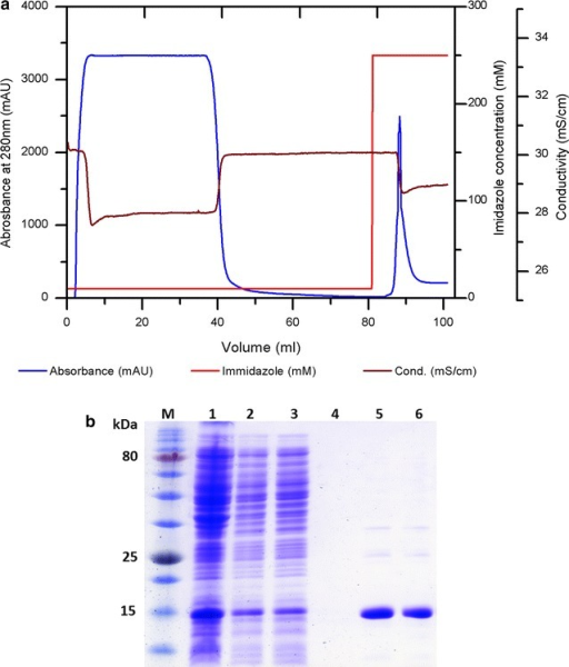 a A chromatographic runs of AviPure purification with 5 mL Ni–NTA column, (1) load, (2) wash, (3) elution fraction. bCoomassie Blue stained 15 % SDS-PAGE gel from different sample fractions, Lane M represent pre-stained protein marker, Lane 1 induced pellets from culture, Lane 2 supernatant after sonication and centrifugation, Lane 3 flow through, Lane 4 Wash, Lane 5 eluted sample before dialysis, Lane 6 eluted sample after dialysis