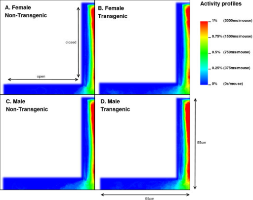Overview of the mouse activity profiles in the EPM. Each graph represents, the activity in the open and closed arms for TNFG (panel A), FTG (panel B), MNTG (panel C) and MTG (panel D). Mouse activity is indicated in colour with red being highest activity, whereas blue reflects low mouse activity in that area. The X-axis and Y-axis illustrate the superposition of the two open and closed arms respectively.