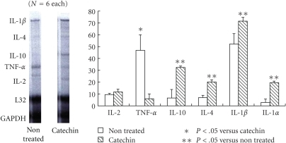 RNase protection assay of myocarditis. TNF-alpha mRNA level was markedly decreased in the catechin treated group compared with that of control group.  On the other hand, mRNA levels of Th2 cytokines such as IL-4 and IL-10 in the catechin treated group (20 mg/kg/day, THEA-FLAN 90S) were markedly enhanced compared with that of control group.