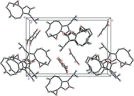 Crystal packing of (I) viewed along the a axis. H atoms have been omitted for clarity.