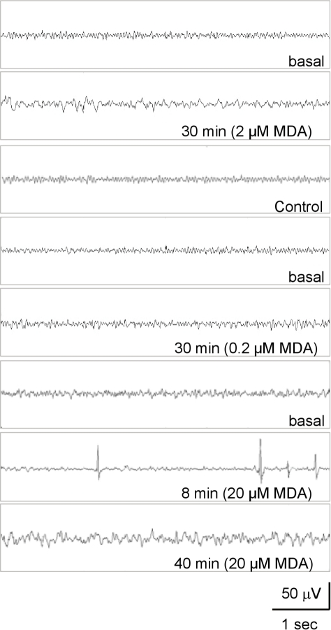 Effects of different concentrations of MDA on the EEG signals of turtles.Typical EEG spectra of turtles treated with different concentrations of MDA (0.1 ml/kg body weight) at different time intervals were as indicated. The EEG signals of turtles without MDA treatment were used as control.