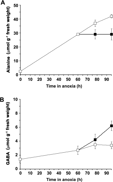 Amino acids (μmol g−1 fresh weight) in excised tips of rice coleoptiles under anoxia in the presence of 0.2 mM NO3−NO3− at pH 6.5 and after 60 h at either pH 6.5 or 3.5. (A) L-alanine, (B) γ-aminobutyric acid (GABA). The start of anoxia is at 0 h. pH 6.5, open squares, thin line; pH 3.5, closed squares, bold line. Data are the means of three experiments, each with three replicates. Values at 0 h are tissues sampled at the end of an 18 h pre-treatment at 0.05 mM O2. In one experiment, coleoptile tips were returned at 78 h from pH 3.5 to 6.5 while maintaining anoxia, and after another 18 h L-alanine had decreased from 30 to 21 (μmol g−1 fresh weight); no data for γ-aminobutyric acid are available after this shift.
