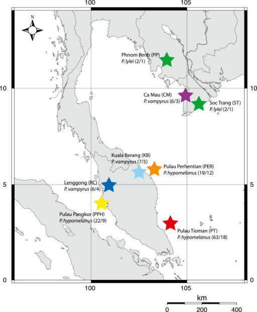 Sampling localities for Cyclopodia horsfieldi (with total flies collected/sequenced) from three Pteropus species in Southeast Asia.