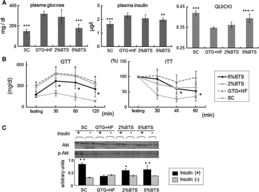 Glucose intolerance and insulin resistance (IR) were attenuated by BTS. a Fasting plasma glucose, insulin levels and QUICKI: increased level of fasted plasma insulin and glucose were decreased, and QUICKI increased by treatment with 5 %BTS, and ITT confirmed severe IR doubleasteriskp < 0.01, tripleasteriskp < 0.001 vs GTG + HF, doubleplus symbolp < 0.01 vs 2 %BTS, n = 6. b Glucose tolerance test (GTT) and insulin tolerance test (ITT): GTT revealed severe glucose intolerance was attenuated, and ITT confirmed IR was attenuated by 5 %BTS. Asteriskp < 0.05 vs GTG + HF, n = 6. c Involvement of Akt in BTS reduction of IR: phosphorylation of Akt was involved in the reduction of IR by BTS treatment as reflected by increased phosphorylation of Akt in the livers of BTS treated mice upon insulin administration. Asteriskp < 0.05, doubleasteriskp < 0.01 vs GTG + HF, n = 4