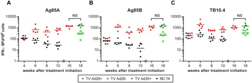 Immunogenicity of Ad35-TBS and Ad26-TBS immunotherapy.At week 4, baseline IFN-γ production to pooled peptides covering the whole sequence of Ag85A, Ag85B and TB10.4 were measured by ELISpot prior to randomization (refer to Fig 1). At this time point, the values between the NC-T4 and TV Ad35+ are identical. Following randomization, animals in the TV Ad35+ group received immunotherapy at weeks 4 and 8 with 1010 viral particles of Ad35-TBS intramuscularly. At week 16, baseline immune responses were measured in the TV Ad35+ group prior to randomization into TV Ad26+ and TV Ad26- groups. The TV Ad26+ animals then received heterologous boosting with 1010 viral particles of Ad26-TBS at week 16 whilst the TV Ad26- received empty Ad26 vector as control. p-values were calculated two weeks after each immunotherapy (weeks 6 and 10) and are detailed in Table 2 (ANOVA followed by Tukey's multiple comparisons test, n = 5 at each time point for all groups). Lines depict geometric mean. No significant differences were observed following Ad26-TBS boosting at week 16 for all groups (NS = not significant, t-test). SFU = splenocyte forming units.