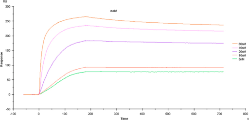 Affinity and kinetic assay.hmPA6 affinity and kinetics assays showed five curves with different concentrations of anti-PA IgG ranging from 5 to 80 nmol/L; Kd = 1.438 × 10−10 M with PA83 at 25 μg/mL.