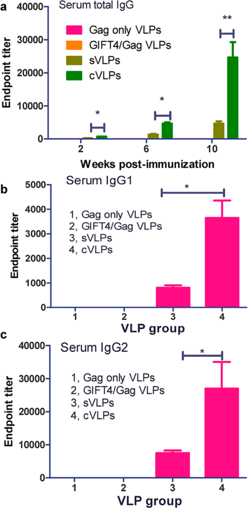 Serum IgG and IgG subtype endpoint titers.Guinea pigs were immunized with Gag only VLPs, GIFT4/Gag VLPs, sVLPs, or cVLPs in the one i.m. priming-two i.n. boosting route at weeks 0, 4, 8, respectively, and immune sere were collected 2 weeks after each immunization at weeks 2, 6, 10, respectively. a, Serum IgG endpoint titers; b, IgG1 titers of immune sera from bleed 3 (week 10); c, IgG2 endpoint titers of immune sera from bleed 3. Assays were performed as described in Materials and Methods. Results are expressed as means ± standard deviations. Student t-test was used for statistical analysis. The analysis was done by using GraphPad Prism version 5.00 for Windows (San Diego, California). P values of less than 0.05 (P < 0.05) were considered to be statistically significant. *P < 0.05; **P < 0.01.
