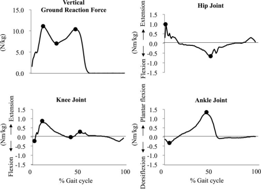 Graph representation of the vertical ground reaction forces and the joint moment ofthe hip, knee, and ankle during a gait cycle