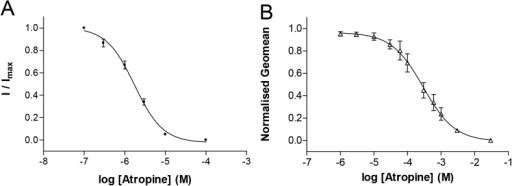 Effects of atropine on the electrophysiological responses to 5-HT and binding of G-FL. (A) Concentration-inhibition of the 2 μM 5-HT response by co-applied atropine. For each oocyte the responses in the presence of antagonist are normalised to the peak current response to 5-HT alone and data represented as the mean ± S.E.M. for a series of oocytes. Curve fitting yielded a pIC50 of 5.76 ± 0.14 (IC50 = 1.74 μM, n = 5) and Hill Slope of 1.06 ± 0.05. (B) Flow cytometry, showing the competition of 10 nM G-FL (a fluorescent derivative of granisetron; Jack et al., 2015) and varying concentrations of atropine at 5-HT3 receptors expressed on the surface of live HEK 293 cells. The affinity (pKi = 5.10 ± 0.16, Ki = 7.94 μM, n = 5) of atropine calculated from these experiments was similar to that measured using electrophysiology.