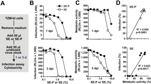 "Adding SE or SE-P directly to target cells results in reduced metabolic activity and HIV infection rates. (A) Schematic outline of the experiment. TZM-bl cells were incubated with different dilutions of SE or SE-P and subsequently infected with HIV-1. (B) Infection rates and (C) metabolic activities were determined after 1 (upper panel) or 3 days (lower panel). (D) Correlation between Tat-driven reporter activities (""infection"") and the metabolic activities of the target cells. Values were derived from the experiments shown in panels B and C, and are shown relative to those obtained in the absence of SE or SE-P (100%)."