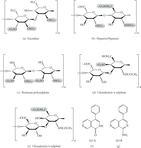 Anticancer polysaccharides from marine floras.