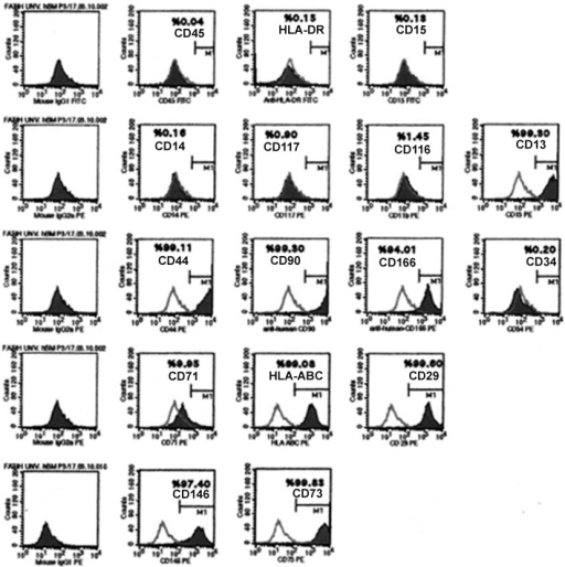 Representative flow cytometry analysis of cell surface markers in hBM-MSCs at passage 3