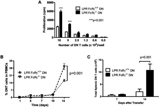 FcRγ deficiency results in an increased accumulation of DN T cells.A. B6.LPR.FcRγ+/+ and B6.LPR.FcRγ−/− mice were given 4×107 CB6F1 splenocytes intravenously. After 7 days, varying numbers of DN T cells were purified and incubated for a further 3 days with irradiated CB6F1 splenocytes (105/well), after which 1 µCi 3H-thymidine was added to each culture. Thymidine uptake, reflecting live proliferated cell number, was determined by scintillation counting. Two-way ANOVA p<0.0001; **Bonferroni post tests p<0.001. B. B6.SCID mice (FcRγ+/+) received 107 B6.LPR.FcRγ+/+ (n = 3, upright triangles) or B6.LPR.FcRγ−/− (n = 3, inverted triangles) DN T cells. On days 1, 5, 7, 10, and 14 blood samples were obtained and peripheral blood mononuclear cells (PBMCs) were stained for TCRβ, CD4, CD8, and NK1.1 expression. The percentage of DN T cells in the PBMC compartment was then determined by flow cytometry. Two-way repeated measures ANOVA p = 0.0279 for the effect of FcRγ genotype; Bonferroni post test p<0.001 at day 14. C. At day 7 and day 14, the splenocytes of the DN T cell recipients were counted and stained for TCRβ, CD4, CD8, and NK1.1 and examined by flow cytometry. The number of splenic DN T cells in each type of recipient was then determined. Two-way ANOVA p = 0.0005 for the effect of FcRγ genotype; Bonferroni post test p<0.001 at day 14.