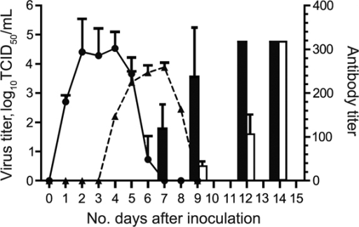 Results of virus titration and hemagglutination-inhibition assay for the cohort of cats inoculated with equine influenza A(H3N8) virus and the contact cohort. Virus shedding was titrated in MDCK cells. Virus titer is shown as log10 median tissue culture infective dose (TCID50) (solid line and circles, inoculated cohort; dashed line and triangles, contact cohort). Hemagglutination-inhibition assay of serum samples was conducted by using 1% horse erythrocytes (black bars, inoculated; white bars, contact cohort). Error bars indicate SEM.