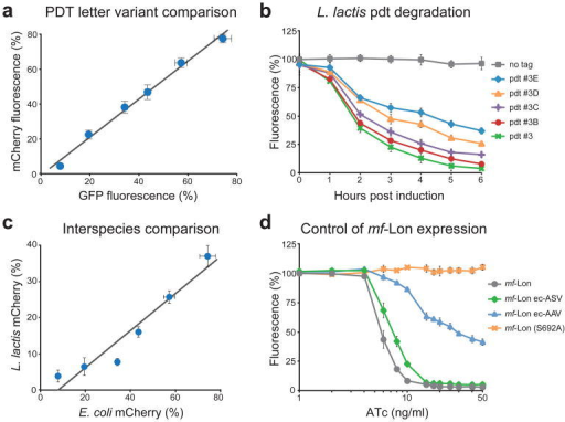 Pdt system characterization(a) Comparative analysis of pdt-mediated degradation of mCherry and GFP. Pdt letter variants were fused to GFP and mCherry, and the percent fluorescence remaining after mf-Lon induction is shown (50 ng/ml ATc for 6 h). Fluorescent data were collected by flow cytometry, and the pdt variants shown are pdt#3, #3A, #3B, #3C, #3D, #3E, listed in order of increasing percent fluorescence. The best-fit line by linear regression is y=1.09× – 0.01 with an R2 value of 0.98 and standard errors of 0.03 and 0.01 for the slope and y-intercept, respectively. (b) Pdt-dependent degradation of mCherry in L. lactis. Nisin induced mf-Lon expression in L. lactis causes pdt-dependent mCherry degradation. Data show the geometric mean fluorescence as a percent of the fluorescence of uninduced cells. Nisin induction was 3 ng/ml. (c) Comparative analysis of pdt letter variants in E. coli and L. lactis. Pdt letter variants were fused to mCherry, and the percent fluorescence remaining after mf-Lon induction is shown (6 hour induction, E. coli: 50 ng/ml ATc and L. lactis: 3 ng/ml nisin). Fluorescent data were collected by flow cytometry, and the pdt variants shown are pdt#3, #3A, #3B, #3C, #3D, #3E, listed in order of increasing percent fluorescence. The best-fit line by linear regression is y=0.51× – 0.04 with an R2 value of 0.91 and standard errors of 0.03 and 0.02 for the slope and y-intercept, respectively. (d) Transcription and post-translation-based control of mf-Lon-mediated pdt degradation. Inducible transcription provides control of mf-Lon-mediated degradation of GFP-pdt#3 across a range of ATc induction levels. Fusion of the E. coli ssrA tag variants ec-AAV and ec-ASV to mf-Lon shift the GFP degradation profile, and inactivation of mf-Lon protease activity (S692A) blocks GFP degradation. Data were collected 6 hours after ATc induction using GFP-pdt#3 as the degradation target. For all panels, the data show the mean of at least three biological replicates and the error bars show the standard deviation.