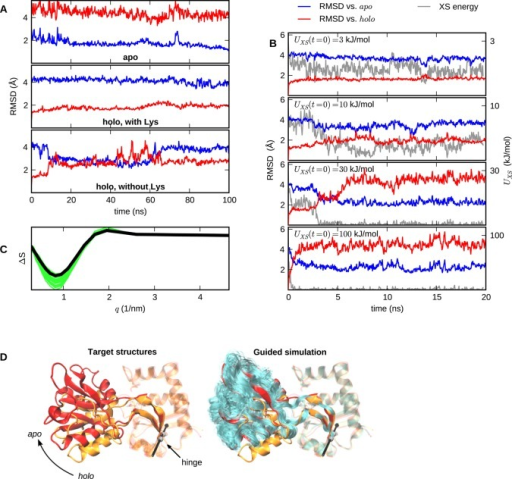 Method validation against the lysine/arginine/ornithine-bindingprotein (LAO). (A) Unrestrained simulations of the apo, holo, and lysine-free holo states.(B) XS-guided MD trajectories aiming at the apo state,starting from the lysine-free holo state, with variouscoupling strengths kχ. The plotshows RMSD:s compared to initial and target structures, as well asthe evolution of the scattering energy. (C) 25 scattering curves,extracted from the second half of the 30 kJ/mol run, together withthe target curve (thick line). (D) Graphical representation of the apo (red) and holo (orange) conformations.The right-hand model also shows a trajectory view over the secondhalf of the 30 kJ/mol run. The hinge axis is indicated.