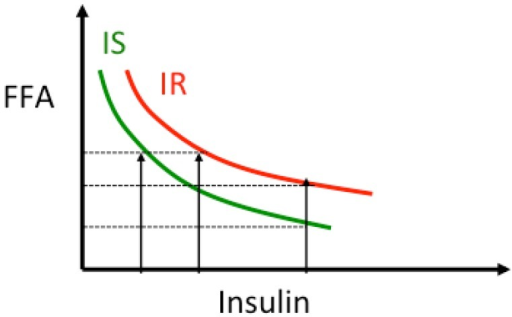 Relationship insulin-lipolysis. As insulin concentration increases, lipolysis, and thus plasma free fatty acids (FFA) concentration, is suppressed following a non-linear curve [65,69,70]. In presence of insulin resistance the curve is shifted to the right indicating that for the same insulin levels lipolysis is less suppressed and circulating FFA levels are higher. The product FFA × Insulin is used as an index of adipose tissue-insulin resistance.