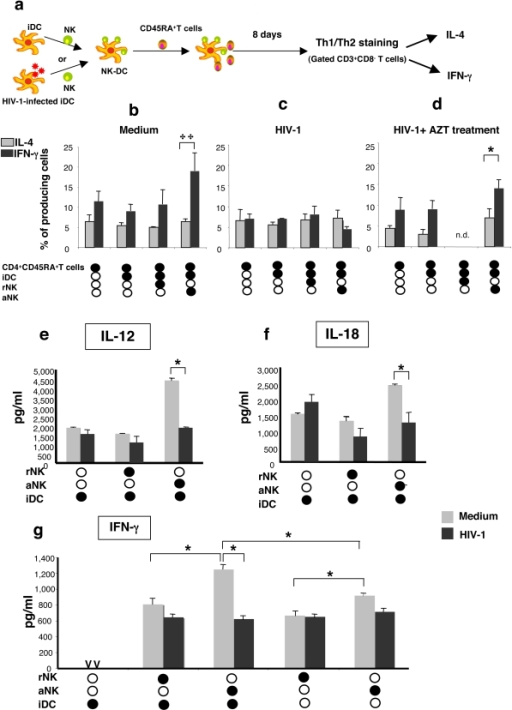 Impairment of NK-triggered Th1 polarization by DCs following HIV-1 infection is associated to altered IL-12 and IL-18 production.(a) Th1 polarization by DCs triggered by NK cells was tested by incubating iDC (106/ml) for 30 mn in the presence of rNK or aNK cells (2×105/ml). Naïve CD4 T cells (106/ml) were added to the cocultures and the frequency of T cells producing IFN-γ or IL-4 was determined by flow cytometry 8 days later. The experiment was performed with either uninfected iDCs (b) iDCs infected with HIV-1BaL (c), or iDC infected with HIV-1BaL in the presence of AZT (1 mM) (d). Culture supernatants of indicated cultures were tested for IL-12 (e), IL-18 (f), and IFN-g (g) content. Data represent the mean±sd of five independent experiments. Statistical comparisons were made with the non-parametric Mann-Whitney test. * p<0.05, **p = 0.03.
