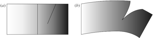 Connectivity of coordinate field versus material property based on meshes from figure 5. (a) Shaded material property shown on coarse mesh with cut line shown for reference and (b) deformed geometry including cut, defined on highly refined mesh.