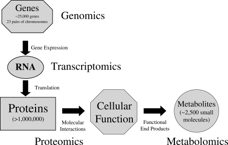 A schematic diagram outlining the complexity of cellular function including associated omics technologies; genomics, transcriptomics, proteomics and metabolomics that contribute to the study and understanding of biological systems.