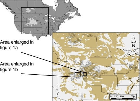 North American distribution of prion disease in deer.In some areas, prion disease foci in deer (Odocoileus spp.) in western North America33 overlap landscapes with soils that have cation exchange capacity (CEC)34 values (tan areas in inset) suggestive of a relative abundance of clay minerals (phyllosilicates) and/or organic matter. Game management units (GMUs) are administrative boundaries used in hunting management3047; prion-infected GMUs are shown in light grey on the continental map and in cross hatching on the inset.