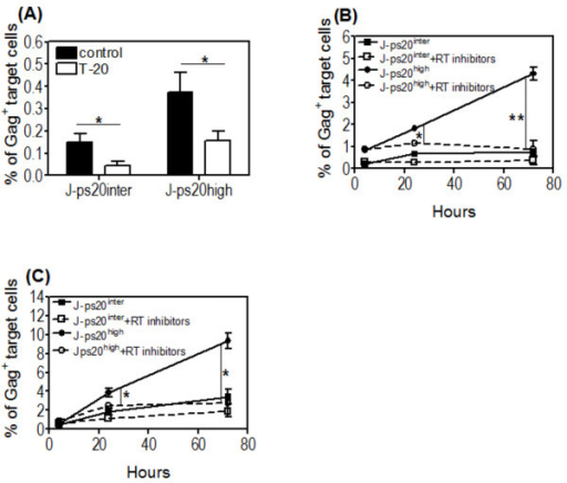HIV-1 transfer into J-ps20high cells is dependent on virus fusion and leads to higher levels of productive infection. (A) J-Ps20high and J-ps20inter target cells stained with DDAO SE vital dye were seeded at 1 × 105 cells per well of a 24 well plate in the presence or the absence of 5 μg/ml of T-20 for 1 hour prior to co-cultured with 18% Jwt ps20inter NL4-3-infected donor cells at a T:D ratio 1:0.2. Mean percentage of Gag+ J-ps20inter vs. J-ps20high target cells 4 hours post co-culture is shown. Data represent mean of three replicate assays. (B) The dye-labelled J-Ps20high and J-ps20inter target cells were seeded at 1 × 105 cells in the presence or the absence of 5 μM of RT-inhibitors (AZT+Lamimidine) for 1 hour prior to co-culture with 25% NL4-3-infected donor cells at a T:D ratio of (B) 1:0.2 or (C) 1:1. The percentage of Gag+ J-ps20inter vs. J-ps20high target cells +/- RT inhibitors were assessed at 4, 24 and 72 hours post co-culture. Data represent the mean of three replicate assays. Asterisks denotes statistically significant data as calculated using a paired t-test (*P ≤0.05; **P ≤0.01).
